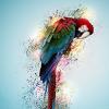 Ветклиники Донецка - последнее сообщение от Ланка